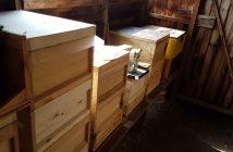 Hive box dimensions